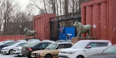 Московское шоссе, 13, скульптуры быков
