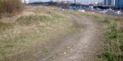 Булыжная дорога между Коломягами и Большой Каменки