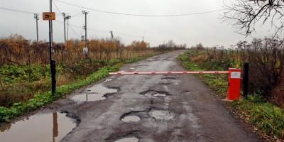 Пушкин, Соболевская дорога