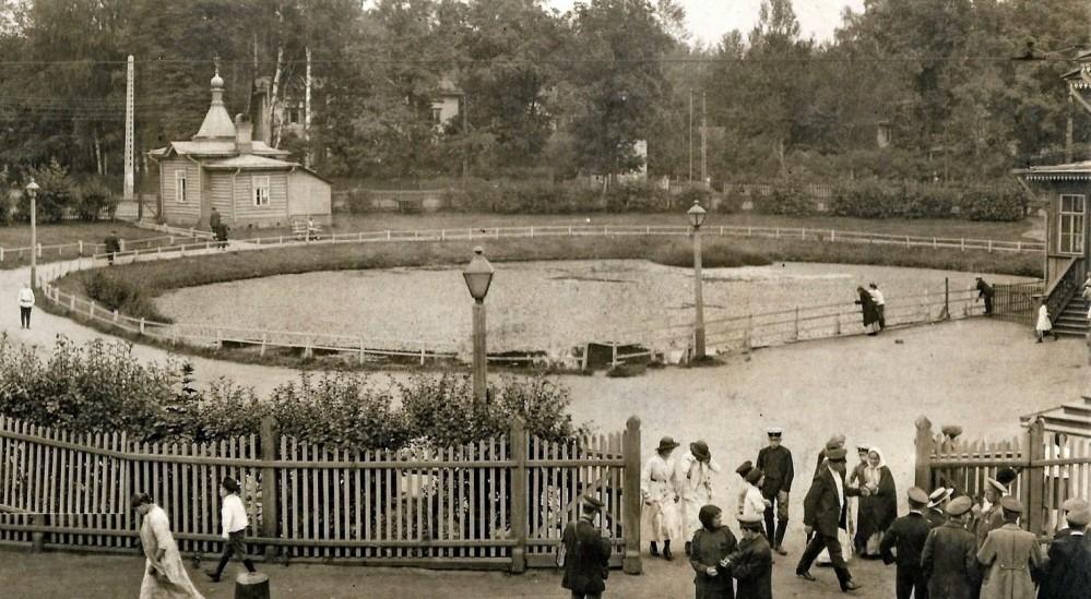 Круглый пруд в Лесном