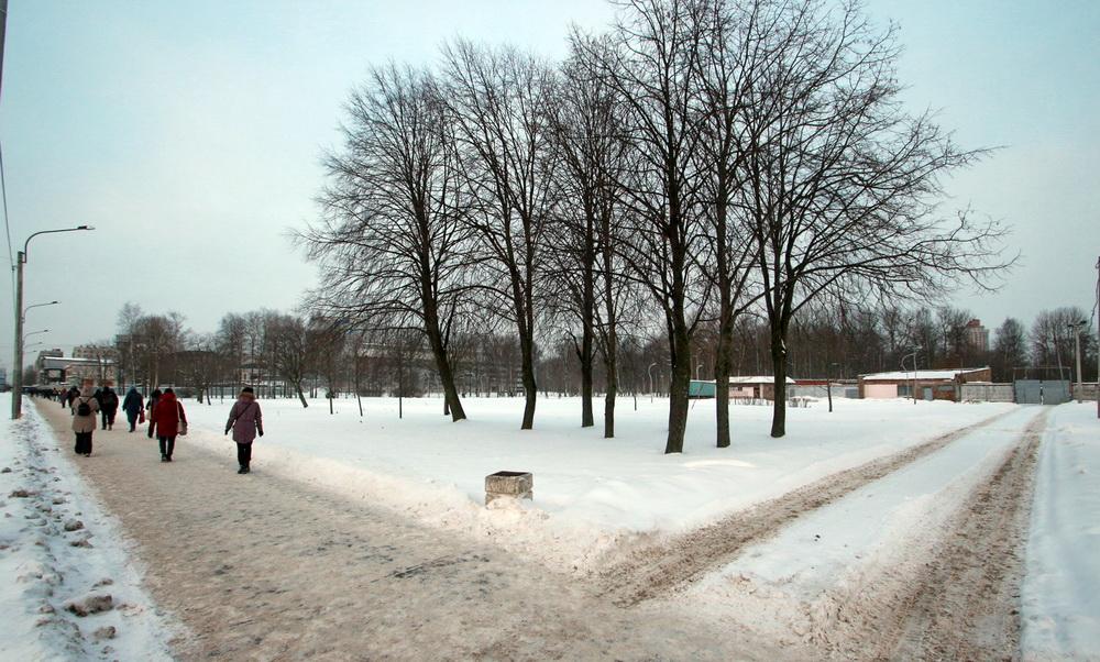 Улица Дыбенко, парк Есенина