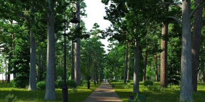 Сестрорецк, проект восстановления Нижнего парка, дорожка