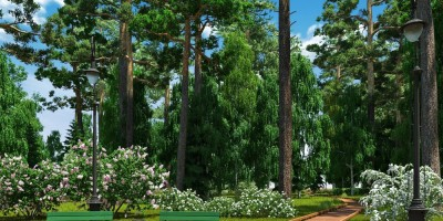 Сестрорецк, проект восстановления Нижнего парка, дорожка из деревянного настила