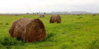 Ленсоветовская дорога, рулоны травы
