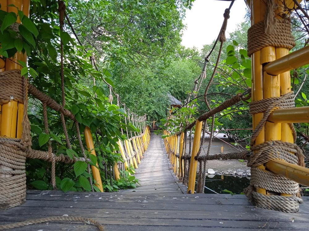 Ленинградский зоопарк, подвесной мост